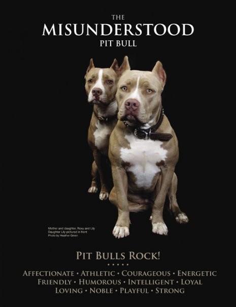 PITBULLS poster