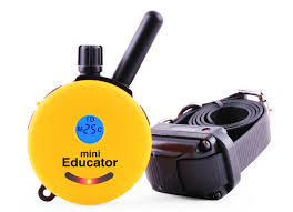 E Collar Technologies Mini Educator