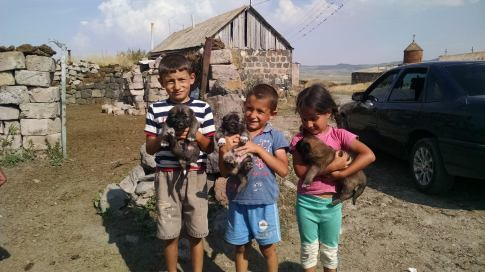 Children in a small village with gampr pups.
